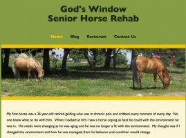 God's Window Senior Horse Rehab