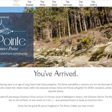Website: The Pointe